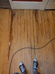 repairing a water damaged wood floor