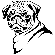 13 8 14 5cm Pug Dog Car Stickers Funny Cute Vinyl Decal Car Styling Bumper Accessories Black Silver S1 0817 Sticker Sticker Temperaturestickers Blue Aliexpress