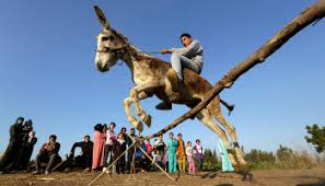 Horses Helping Kids – AP Images Blog