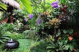 dennis hundscheidt s balinese garden