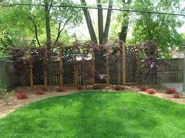 Backyard Fence Line Landscaping Ideas Backyard Ideas Pinterest Induced Info
