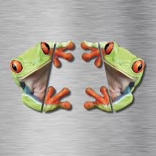 Cute 3d Peep Frog Funny Car Stickers Truck Window Decal Graphics Sticker Decals For Sale Online Ebay