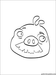 Angry Birds Varken Met Een Snor Gratis Kleurplaten