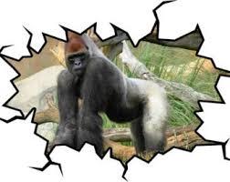 Infinity Love Gorilla Harambe Vinyl Sticker Car Decal 7 P05 Rip Forever