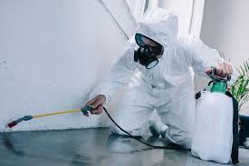 Modern Pest Control, Shanker Nagar - Pest Control Services in Raipur-Chhattisgarh, Raipur-chhattisgarh - Justdial