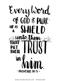 bible quote every word god pure stock image now