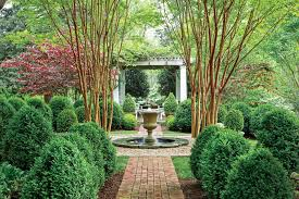 Nothing Beats Boxwood And Here S Why Southern Living