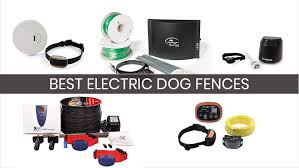 5 Best Electric Dog Fences Compare Buy Save 2018 Heavy Com