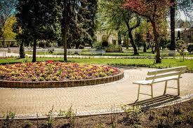 park flower garden bench grass
