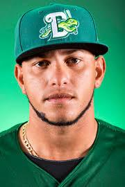 Ismael Guillon Stats, Highlights, Bio | Daytona Tortugas Stats