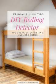 diy bedbug detector is and