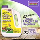 Amazon Com Liquid Fence Dog Cat Repellent Ready To Use 32 Ounce Multi Quart 100047372 Garden Outdoor