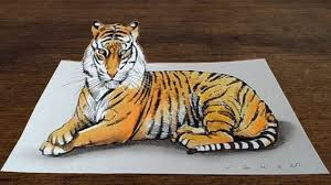 Drawing 3D Tiger Illusion on Paper ...