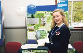 Skerries Students Win Award At Scifest 2015 – North County Leader