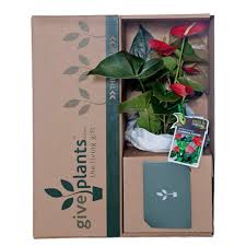 sympathy gift funeral tributes