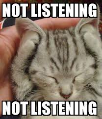 NOT LISTENING, NOT LISTENING | Funny animal memes, Cute cats, Cute ...