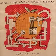 Weasel Walter/Mary Halvorson/Peter Evans - Electric Fruit | Review | The  Jazz Mann