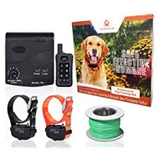 Wire In Ground Dog Or Cat Containment Fence System Dr Tiger 1 Receiver Electric Dog Fence With Rechargeable Shock Collar Pinnacleoilandgas Com
