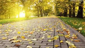 خلفيات للكمبيوتر 2018 بجودة عالية Landscape Wallpaper Autumn