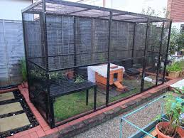 Mr Papageorgiou S Outdoor Rabbit Run