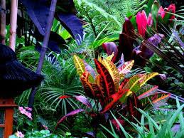 balinese garden ideas balinese garden