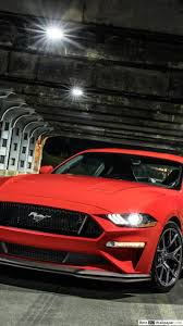 red ford mustang gt hd wallpaper