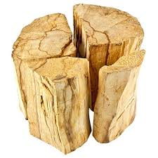 Image result for palo santo""