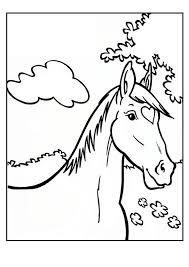 Kleurplaten Per Beginletter Kleurplaten Paarden Paardenhoofd