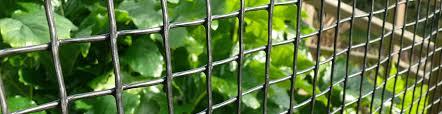 Plastic Mesh Fencing Plastic Netting Fence Suregreen