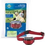 Electric Dog Fence Collars Wireless Free Shipping Chewy