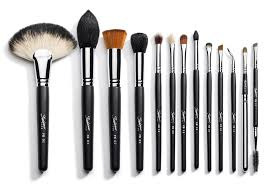 professional makeup artist brushes
