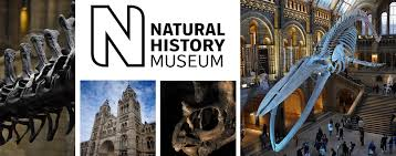 VICTA Pre-Teen Science Day, Natural History Museum - VICTA