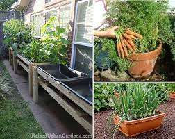 ideas for growing vegetables in small