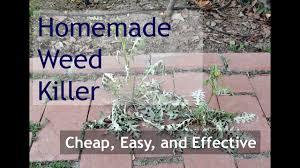 weed control hydrochloric acid slow