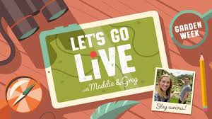 Let's go live with Maddie & Greg • Vision RCL