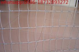 Electric Galvanized Hexagonal Poultry Rabbit Goat Filed Wire Netting Garden Fence For Sale