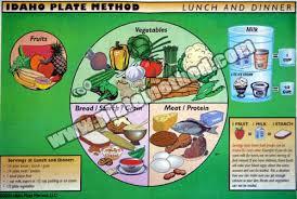 idaho plate method s