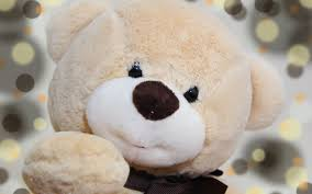 تحميل خلفيات دب البيج شبل الدب اللعب لطيف الدب الرومانسية