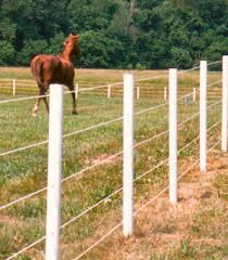 Electric Fence Electric Fence For Horses Rope