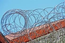 Razor Wire Vs Barbed Wire The Most Detailed Comparison Dongfu Wire Mesh