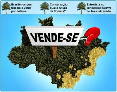"""Resultado de imagem para Na Amazônia, a floresta está à venda"""""""