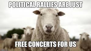 Politics Sheep Memes Gifs Imgflip