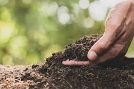 what ground or soil types are you