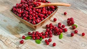 Hasil gambar untuk Cranberry