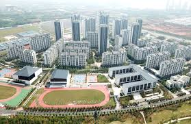 Military World Games unites people for a better city Wuhan ...