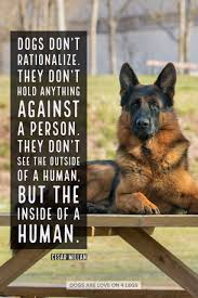dog quote dogs don t rationalize dog dog quotes