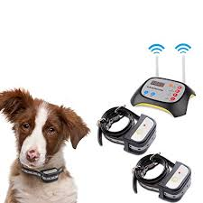 Best Dog Wireless Fences Buying Guide Gistgear