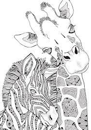 Boek Kleurplaat Voor Volwassenen En Kinderen Giraffe En Zebra