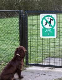 Boundary Training No Fence No Problem