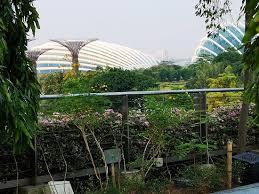 Tripadvisor Gardens By The Bay Singapore Provided By Sal Holidays